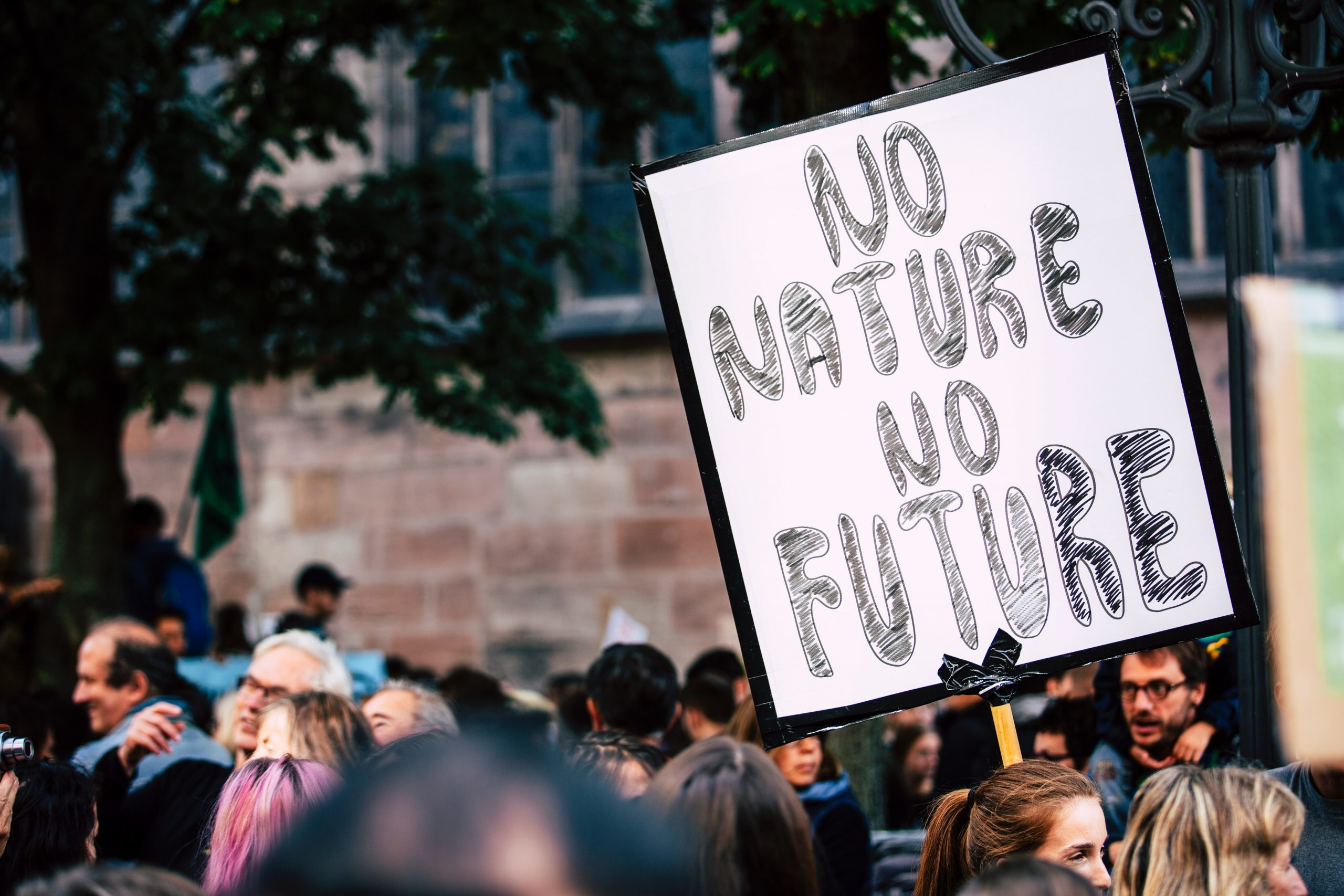 person holding a sign that says No Nature No Future
