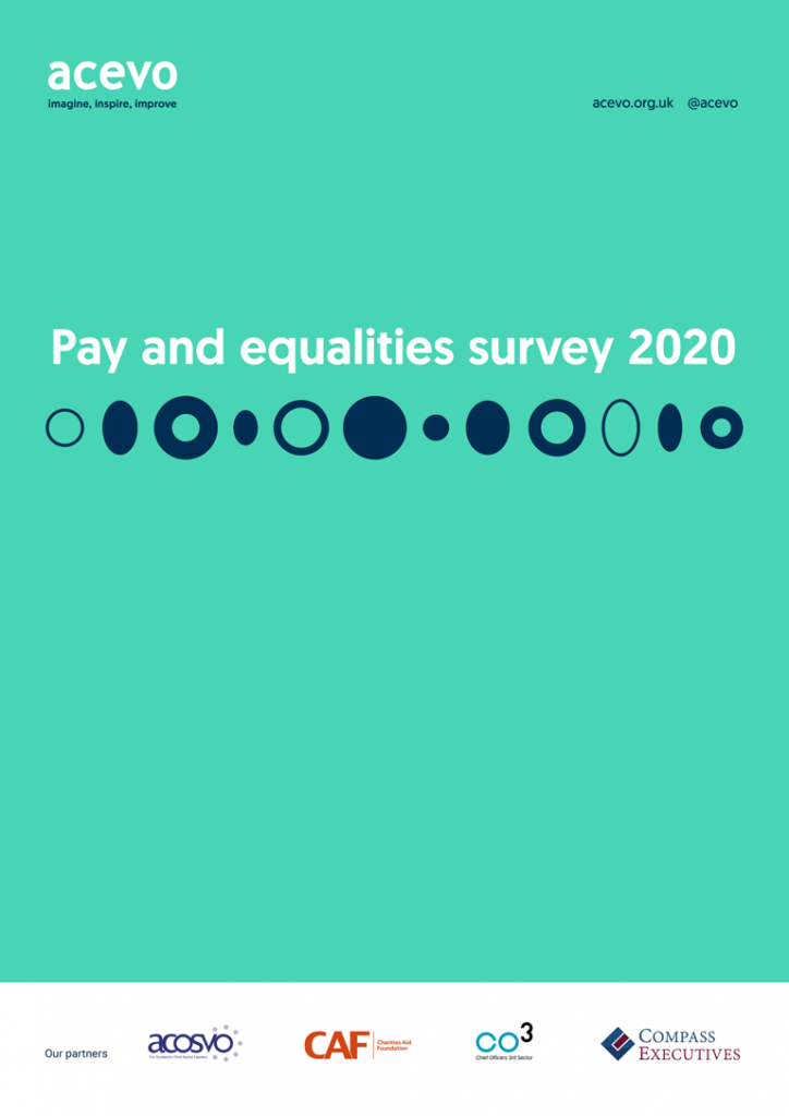 Pay and Equalities Survey 2020 front cover
