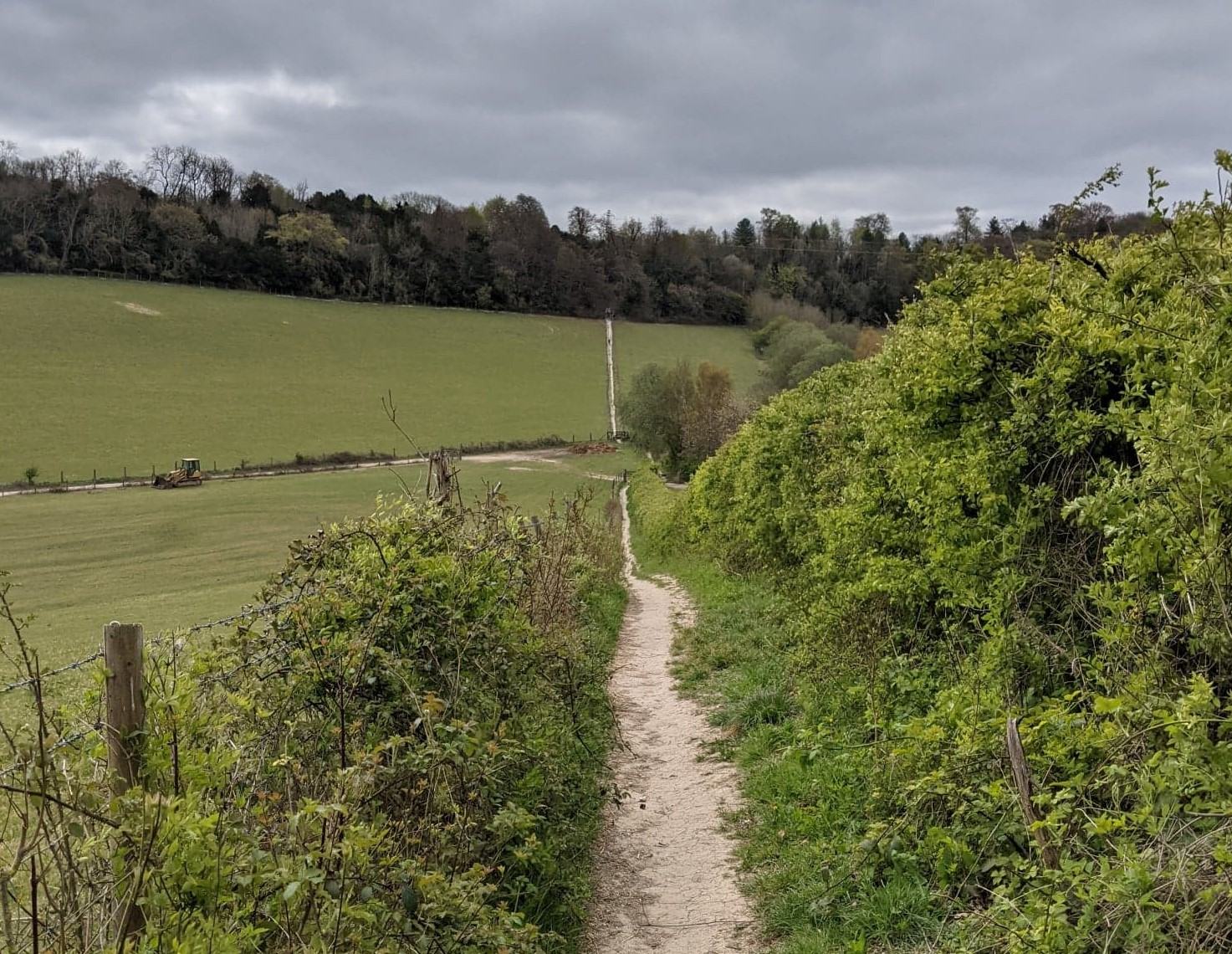 photo of a countruside trial. there is a well marked path between a green field and a hedge. there are woodlands in the distance. the sky is cloudy