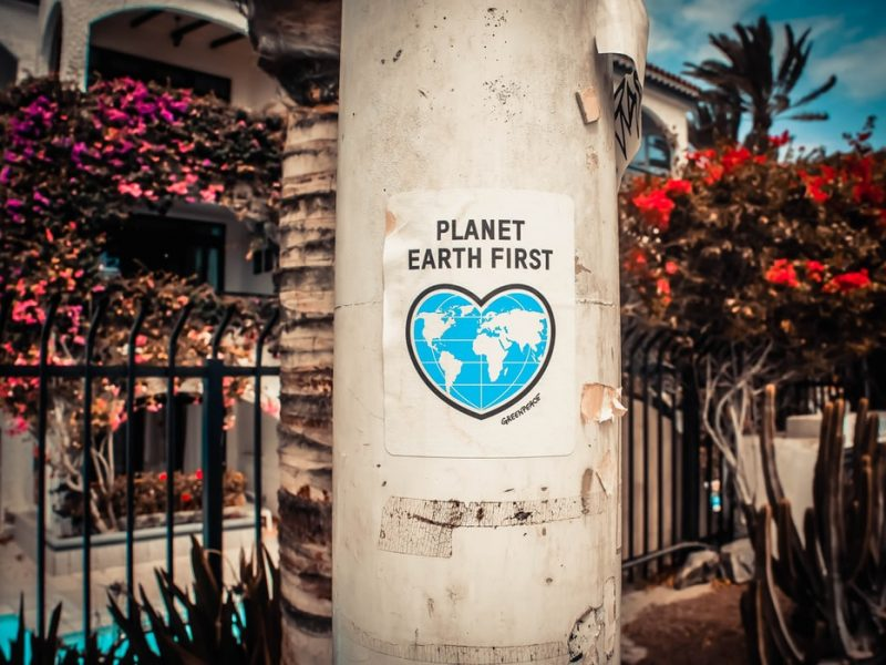 photo of a poster glued to a concrete pillar on the street. The poster says 'Planet Earth First'