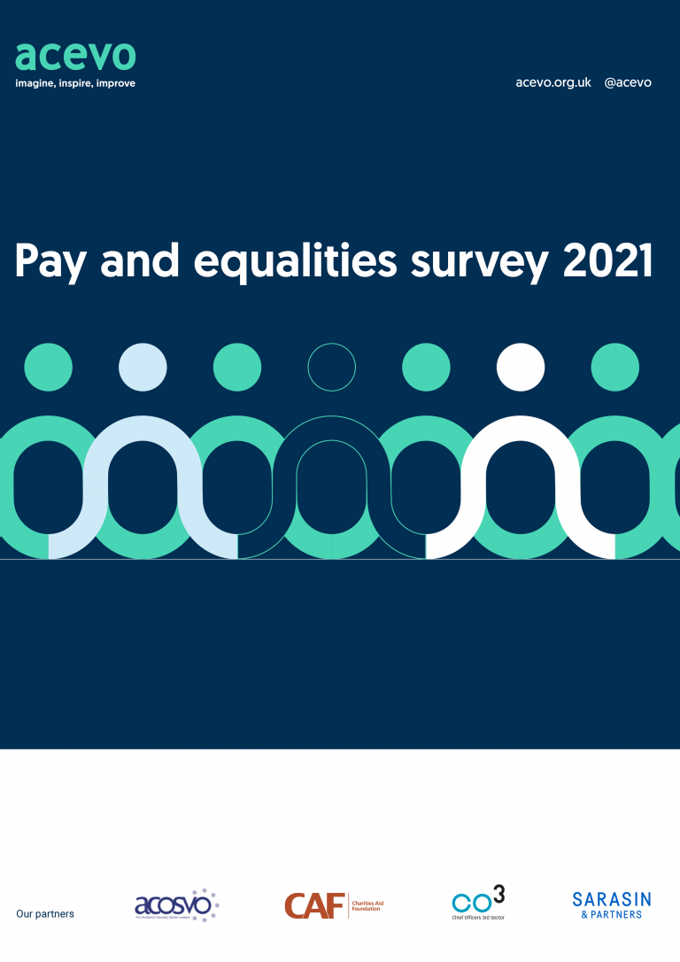 Pay & Equalities Survey front cover. Navy blue background with an illustration on linked figures in mint, white and blue