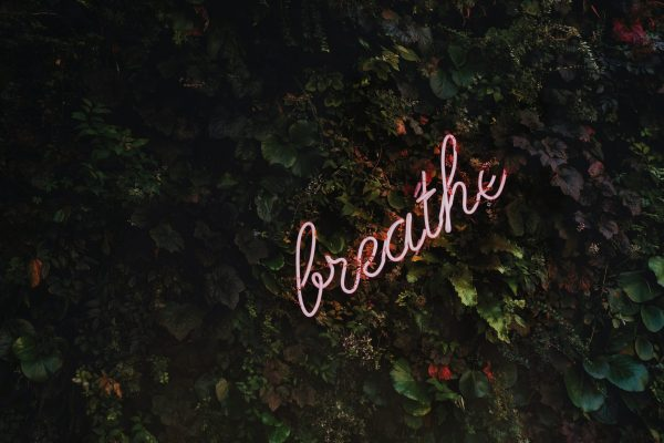 neon sign saying 'breathe' against a green wall